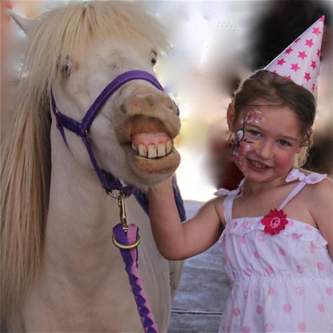 pony hire melbourne