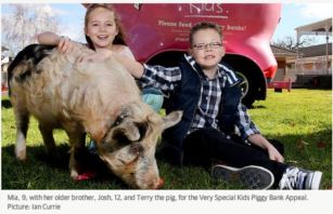 Very Special Kids exceeds million dollar mark for annual Piggy Bank Appeal fundraiser