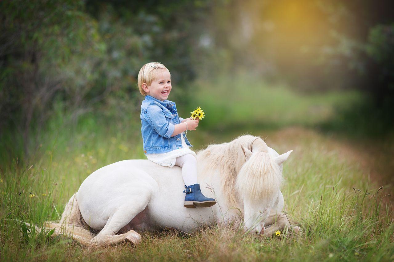 pony hire